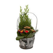 Christmas arrangements with potted flowers (JIS0023)