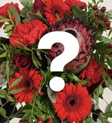 Florist`s choice Season bouquet 19,95-79,95€